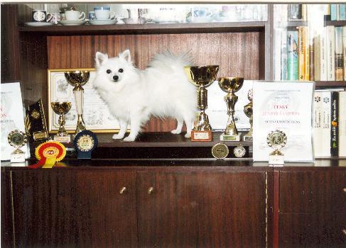 Harmička a její trofeje :)